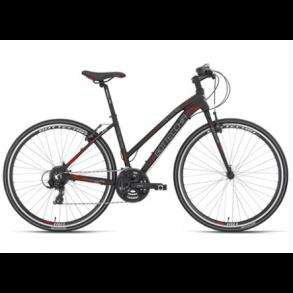Ebsen Bikes / Bottecchia / MTB